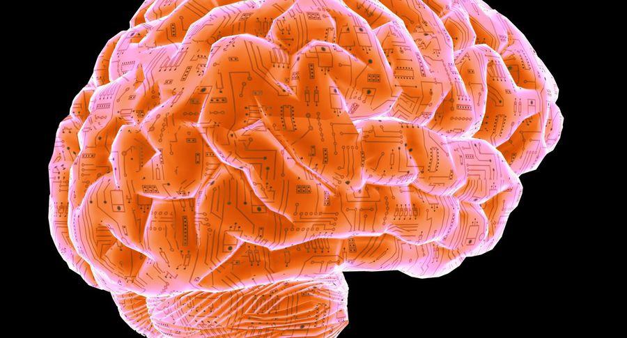 Ученые: Чай понижает риск старческого слабоумия