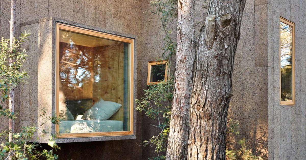 Fotod: haruldasest materjalist ehitatud elumajad koguvad veebis tähelepanu