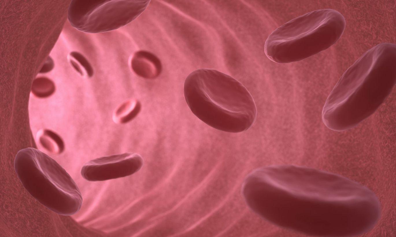 eritrotsiti-v-sperme