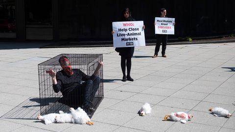 30.märts 2020, Maailma Terviseorganisatsiooni peakorteri ees Washingtonis protesteerivad loomaturgude vastu PETA aktivistid