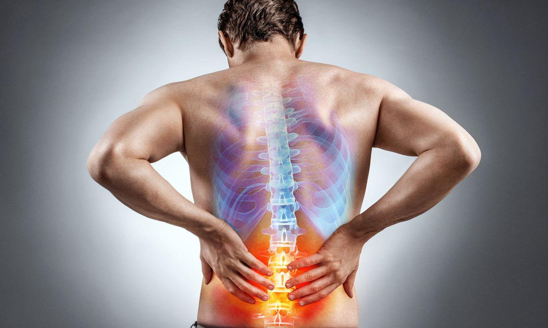 гдк фото мышц спины фото нерф фото позвоночника словами, данный