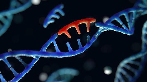 DNA osad ei karga olemasolevatesse geenidesse lihtsalt ise vahele, need ei pääse isegi rakku. Geenide muutmine on ka laboritingimustes keeruline ja pikk protsess.
