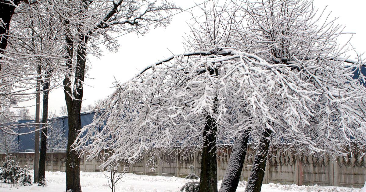 вас есть картинки ветреной погоды зимой словам дальнобойщика
