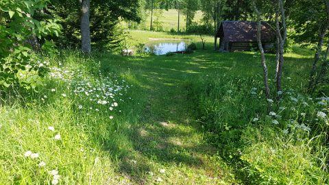 Harvem käidavatesse piirkondadesse niida muruniidukiga sisse käigurada, ülejäänud alal tee juulikuus heina.