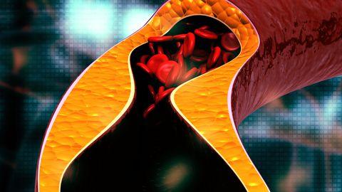 Punased vererakud pressivad end tänu elastsusele läbi ka väiksematest veresoontest.
