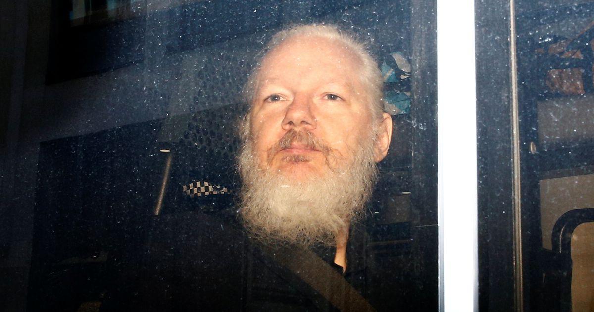 Holly Cullen: milline tulevik ja millised süüdistused ootavad ees Julian Assange'i?