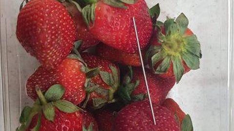 Gladstone´ist osatetud maasikate vahelt leitud nõel.
