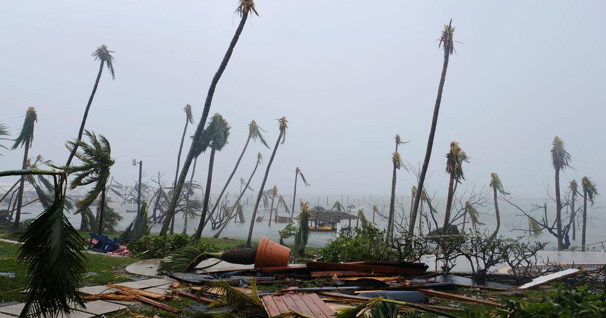 Orkaani