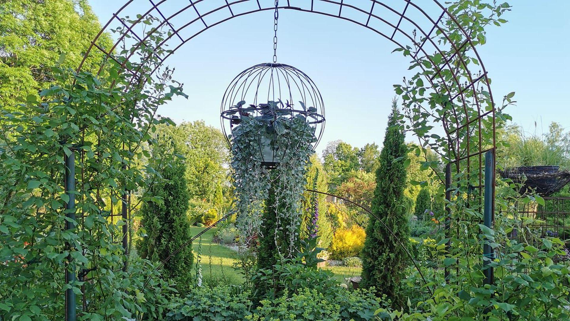 Saaremaa aiad pakuvad pühapäeval lille- ja pannkoogilöhna
