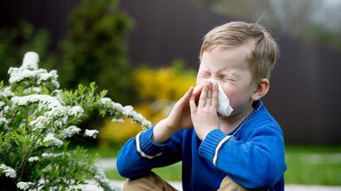 Kevad toob kaasa allergiahooaja.