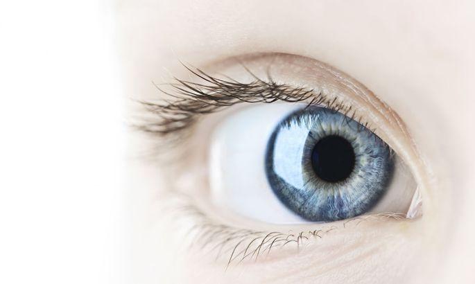 77ef2507207 FOTO: SCANPIX. Silmaarstide sõnul tekitavad õhuniiskus ja liiga ere valgus  silmade ...